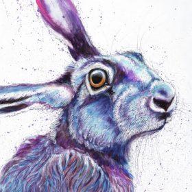Purple Hare #2